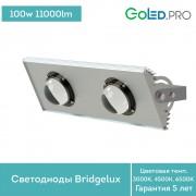 Светодиодный светильник ПромЛед Прожектор v2.0-100 ЭКО