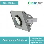 Светодиодный светильник ПромЛед Прожектор v2.0-50 ЭКО