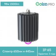 Светодиодный светильник ПромЛед ПРОФИ-100-ФИТО