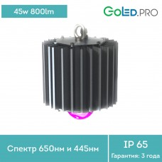 Светодиодный светильник ПромЛед ПРОФИ-50-ФИТО