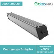 Светодиодный светильник ПромЛед Т-Линия v2.0-100